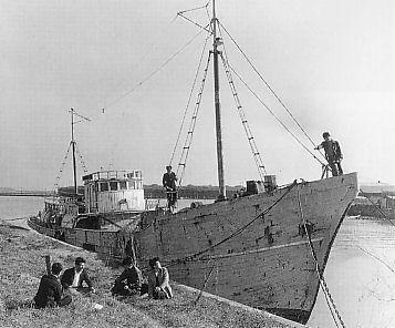 El atunero Daigo Fukuryu Maru en 1954