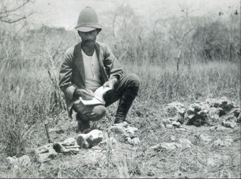 Werner Ernst Martin Janensch (11 de noviembre 1878 - 20 de octubre 1969) fue un alemán paleontólogo y geólogo