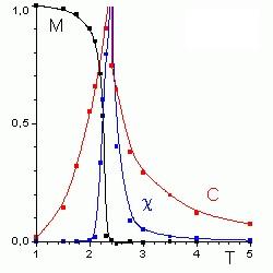 Figura 2: Red cuadrada de espines (+,-) del modelo bidimensional de Ising (arriba) y representación de la magnetización, susceptibilidad magnética y capacidad calorífica obtenidos a partir del modelo (abajo)