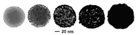 Síntesis de nanocáscaras de oro. Una nanoesfera de sílice se va recubriendo con una fina capa de oro.