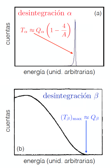 Espectros de energía de las partículas α y de los electrones emitidos respectivamente en el caso de las desintegraciones α (arriba) y β (abajo).
